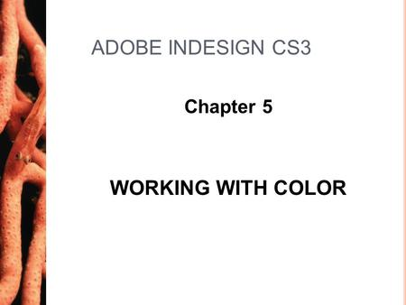 ADOBE INDESIGN CS3 Chapter 5 WORKING WITH COLOR. Chapter 52 Work with Process Colors LESSON 1 2 Process colors are colors you create by mixing varying.