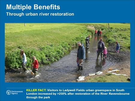 Through urban river restoration Multiple Benefits KILLER FACT: Visitors to Ladywell Fields urban greenspace in South London increased by >250% after restoration.