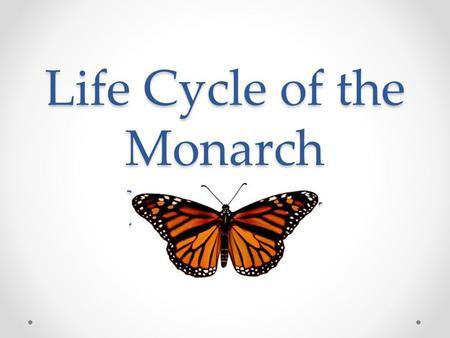 Life Cycle of the Monarch Butterfly. What is Monarch Butterfly? The Monarch butterfly is a Milkweed butterfly with a beautiful bright orange and black.