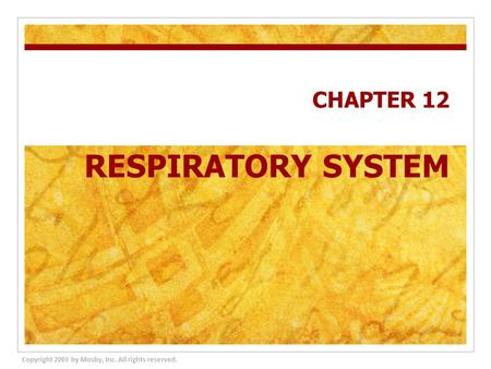 CHAPTER 12 RESPIRATORY SYSTEM Copyright 2003 by Mosby, Inc. All rights reserved.