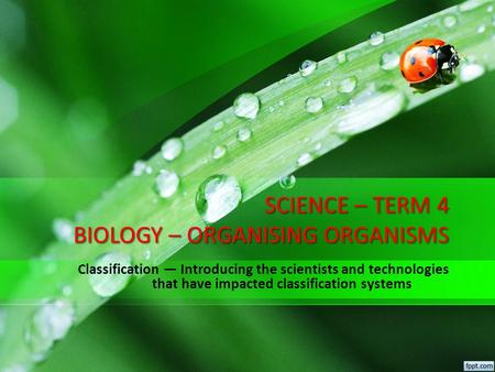 SCIENCE – TERM 4 BIOLOGY – ORGANISING ORGANISMS Classification — Introducing the scientists and technologies that have impacted classification systems.