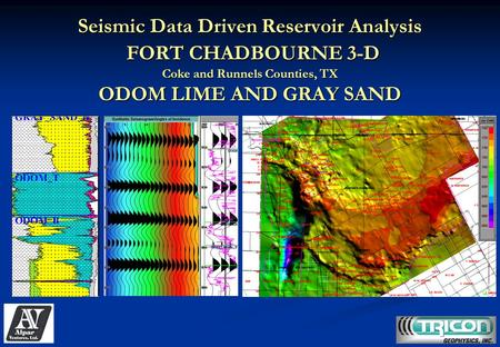 Seismic Data Driven Reservoir Analysis FORT CHADBOURNE 3-D Coke and Runnels Counties, TX ODOM LIME AND GRAY SAND.