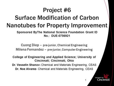 Project #6 Surface Modification of Carbon Nanotubes for Property Improvement Cuong Diep – pre-junior, Chemical Engineering Milena Fernandez – pre-junior,