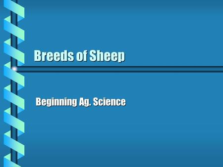 Breeds of Sheep Beginning Ag. Science. Cheviot b Originated in Scotland b Resistant to cold, windy conditions b White, wool free faces b Long wool type.