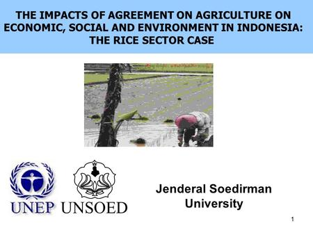 1 Jenderal Soedirman University UNSOED THE IMPACTS OF AGREEMENT ON AGRICULTURE ON ECONOMIC, SOCIAL AND ENVIRONMENT IN INDONESIA: THE RICE SECTOR CASE.