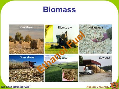 1 Auburn UniversityBiomass Refining CAFI Corn stover Wood chip Bagasse Rice straw Sawdust Biomass Ethanol Fuel.