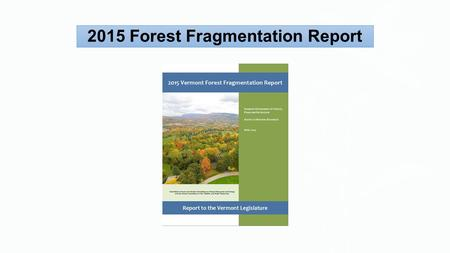 2015 Forest Fragmentation Report. FOREST VALUES VERMONT'S FORESTS WORK FOR ALL Photos © Susan C. Morse.