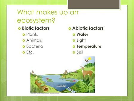 Soil and productivity ppt download for What 5 materials make up soil
