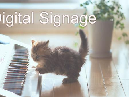 Digital Signage has been put into use in the business or organization. For the purpose of the three major reasons to create name or brand, communications.