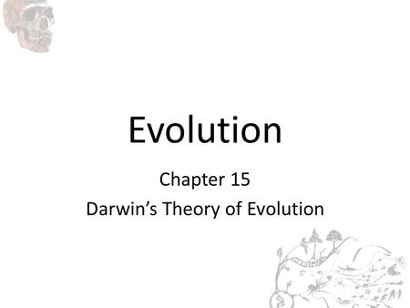 Evolution Chapter 15 Darwin's Theory of Evolution.