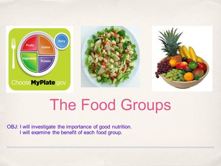 The Food Groups OBJ: I will investigate the importance of good nutrition. I will examine the benefit of each food group.