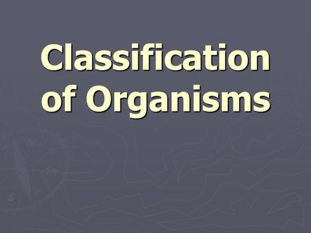 Classification of Organisms. ► The study of the kinds and diversity of organisms and their evolutionary relationships is called taxonomy  Taxonomy is.