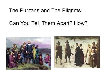 The Puritans and The Pilgrims Can You Tell Them Apart? How?