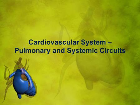 Cardiovascular System – Pulmonary and Systemic Circuits.