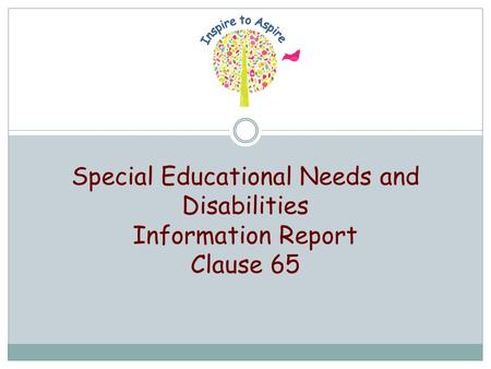 Special Educational Needs and Disabilities Information Report Clause 65.