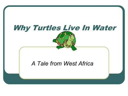 Why Turtles Live In Water
