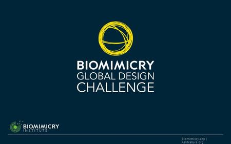 Biomimicry.org | AskNature.org. BIOMIMICRY INSTITUTE DESIGN FOR LIFE. The Biomimicry Global Design Challenge is an annual competition hosted by the Biomimicry.