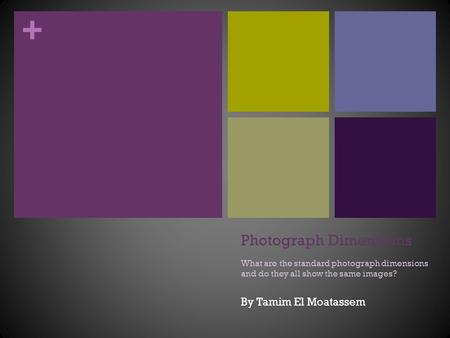 + Photograph Dimensions What are the standard photograph dimensions and do they all show the same images? By Tamim El Moatassem.