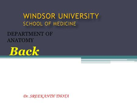 Dr. SREEKANTH THOTA DEPARTMENT OF ANATOMY Back. The back comprises the posterior aspect of the trunk, inferior to the neck and superior to the buttocks.