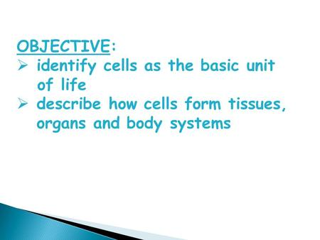 OBJECTIVE:  identify cells as the basic unit of life  describe how cells form tissues, organs and body systems.