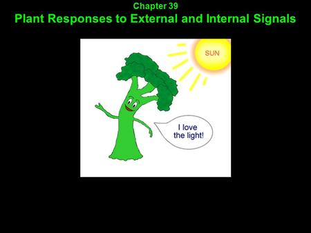 Chapter 39 Plant Responses to External and Internal Signals.