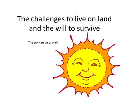 The challenges to live on land and the will to survive The sun can be brutal!