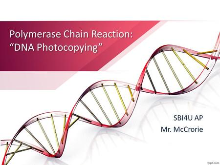 "Polymerase Chain Reaction: ""DNA Photocopying"" SBI4U AP Mr. McCrorie."
