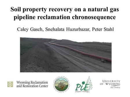 Soil property recovery on a natural gas pipeline reclamation chronosequence Caley Gasch, Snehalata Huzurbazar, Peter Stahl.