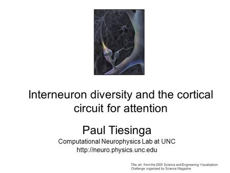 Interneuron diversity and the cortical circuit for attention Paul Tiesinga Computational Neurophysics Lab at UNC  Title art: