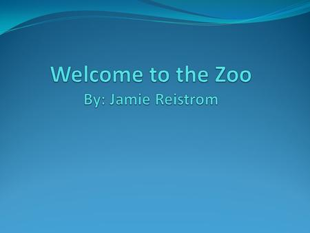 Creating a zoo animal Objectives: Students will be able to: create a zoo animal using information from the story At the Zoo and classroom materials.