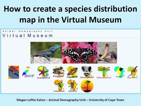 How to create a species distribution map in the Virtual Museum Megan Loftie-Eaton – Animal Demography Unit – University of Cape Town.