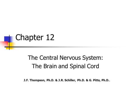 Chapter 12 The Central Nervous <strong>System</strong>: The Brain <strong>and</strong> Spinal Cord J.F. Thompson, Ph.D. & J.R. Schiller, Ph.D. & G. Pitts, Ph.D..