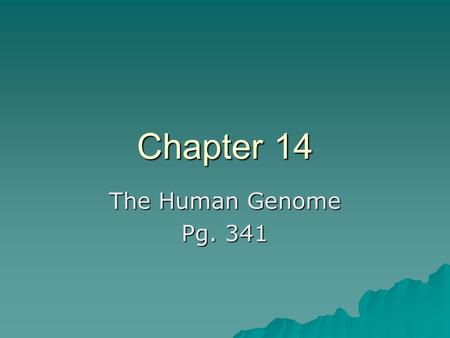 Chapter 14 The Human Genome Pg. 341. Section 14-1 Human Heredity  In order to learn more about humans, scientists started looking at our chromosomes.