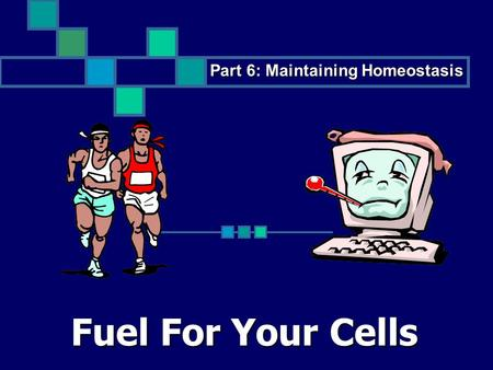 Fuel For Your Cells Part 6: Maintaining Homeostasis.