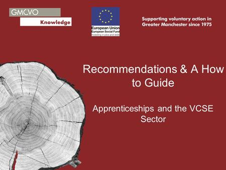 Recommendations & A How to Guide Apprenticeships and the VCSE Sector.