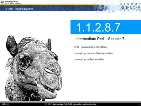 1.1.2.8 – Intermediate Perl 1/6/20161.1.2.8.7 - Intermediate Perl - POD, parameters and configuration 1 1.1.2.8.7 Intermediate Perl – Session 7 · POD –