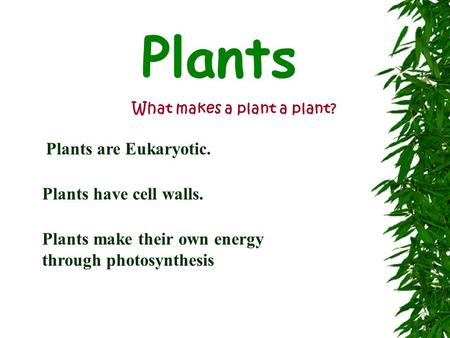 Plants What makes a plant a plant? Plants are Eukaryotic. Plants have cell walls. Plants make their own energy through photosynthesis.