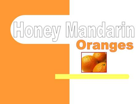 Mandarins are citrus fruits in the orange family that grow on small citrus trees The mandarin orange is considered a native of south- eastern Asia and.