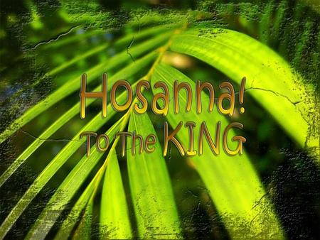 Palm Sunday - The King is here! 1.Jesus Declares His Kingship by Riding on a Donkey – 21:1-11.