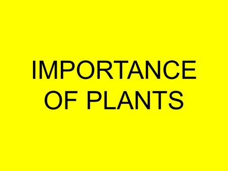 IMPORTANCE OF PLANTS. Importance of Plants Oxygen Food/feed Medicine –