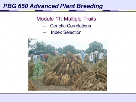 PBG 650 Advanced Plant Breeding Module 11: Multiple Traits –Genetic Correlations – Index Selection.