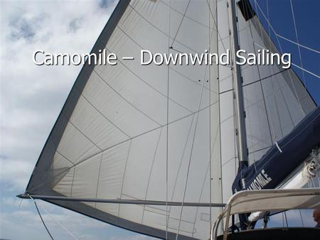 "Camomile – Downwind Sailing. The Twizzle Rig Twin 135% ""heavy"" headsails on one foil Twin 135% ""heavy"" headsails on one foil 80mm diameter aluminum ""whisker"""