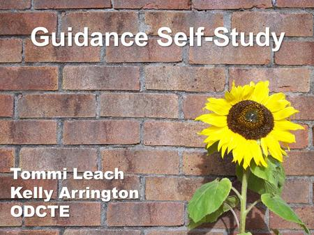 Guidance Self-Study Tommi Leach Kelly Arrington ODCTE.
