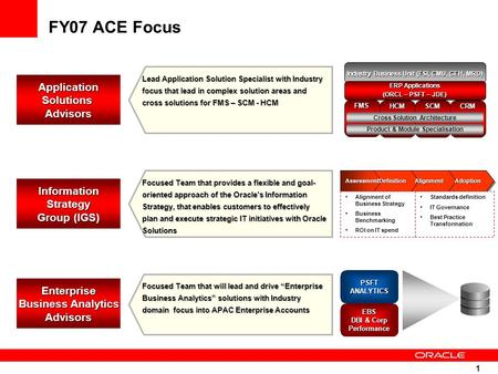 1 FY07 ACE Focus ApplicationSolutionsAdvisors InformationStrategy Group (IGS) Enterprise Business Analytics Advisors Focused Team that provides a flexible.