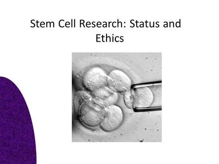 Stem Cell Research: Status and Ethics. Task 1: Key definitions Pluripotent – Embryonic stem cell – Differentiated -