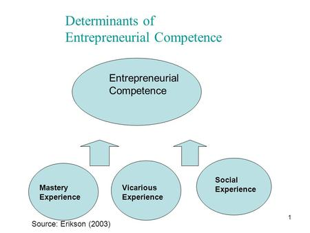 1 Mastery Experience Vicarious Experience Social Experience Entrepreneurial Competence Source: Erikson (2003) Determinants of Entrepreneurial Competence.