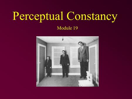 Perceptual Constancy Module 19. Perceptual Constancy Perceiving objects as stable or constant –having consistent lightness, color, shape, and size even.