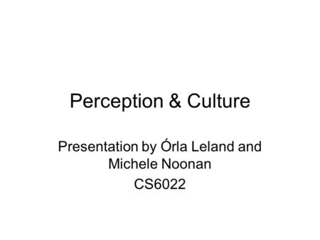Perception & Culture Presentation by Órla Leland and Michele Noonan CS6022.