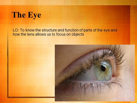 The Eye LO: To know the structure and function of parts of the eye and how the lens allows us to focus on objects.
