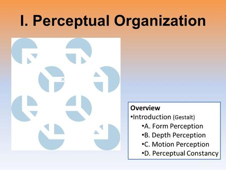 I. Perceptual Organization Overview Introduction (Gestalt) A. Form Perception B. Depth Perception C. Motion Perception D. Perceptual Constancy.